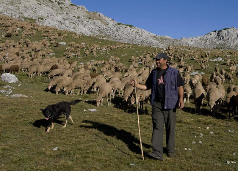 A los seis años ya subía al puerto con las ovejas»