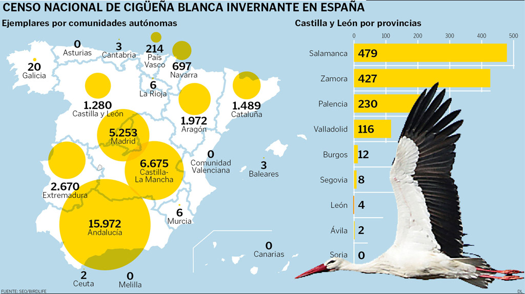 III Censo de Cigüeña Blanca CCAA. SEO/BirdLife